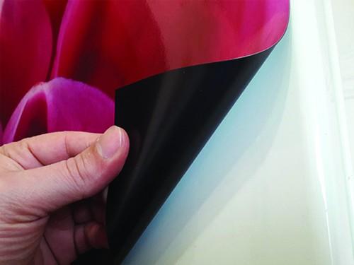magnit-na-kholodilnik